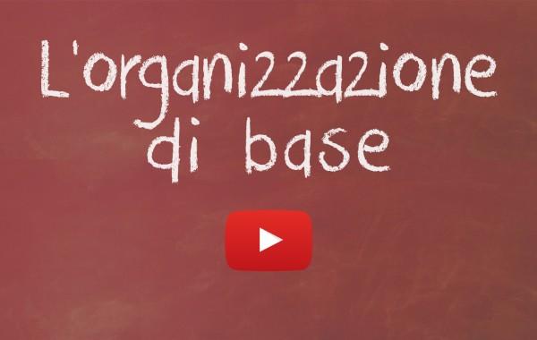 L' Organizzazione di base
